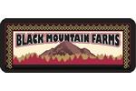 Black Mtn logo